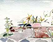 Wall garden, postcard, archival ink, watercolours, Vancouver