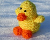 Little Crocheted Duckie