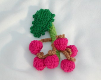 PDF -- PATTERN----Pickable Raspberries