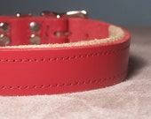 Custom handcrafted leather dog collar for Sophie and pal size 2.5cm x 54-61cm