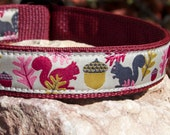 Dog Collar with Squirrel and Acorn Theme - LAST ONE
