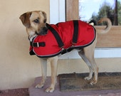 Winter Dog Coat size 19 - Horse Blanket style with metal buckles - waterproof and durable