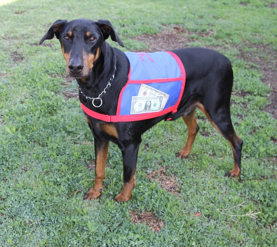 Dog Vest With Pockets Fundraiser Dog Vest With Large