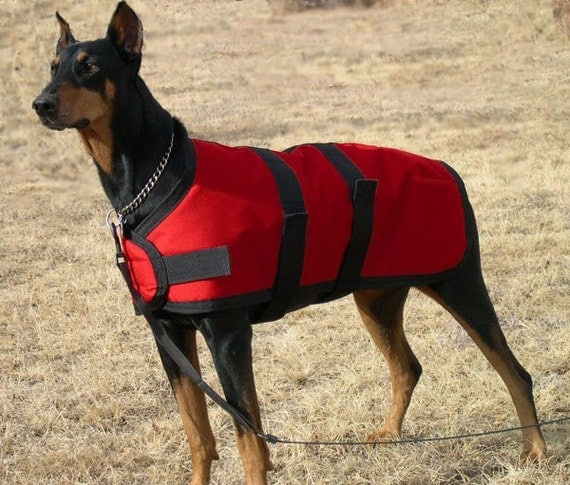 Insulated Waterproof Red Winter Dog Coat Size 26 For By