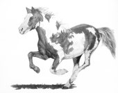 Running Paint Mustang Horse Drawing Print 8 x 10
