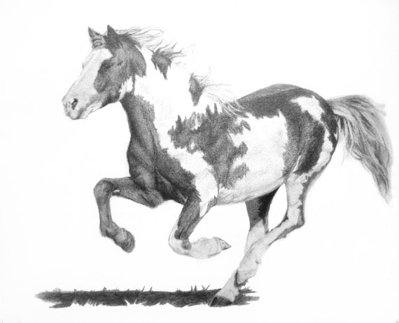 Items similar to Running Paint Mustang Horse Drawing Print