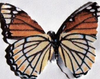 24 Burnt Orange And Khaki Butterflies Paper Embellishment For Scrapbooking