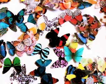 200 Paper Butterflies, Embellishment For scrapbooking, DIY butterfly wedding, baby showers, DIY ACEO, school kits, wall art, cupcake toppers
