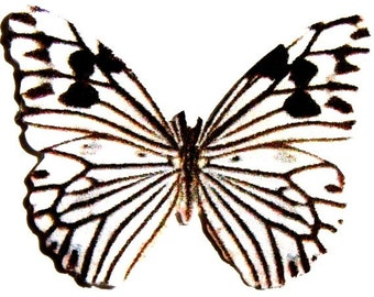 24 Black And White Butterfly Paper Embellishment For Scrapbooking, diy weddings, baby showers, photo props, jewelry, DIY mobiles, DIY ACEO,