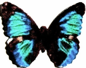24 Teal, Black And Blue Butterfly Paper Embellishment For Scrapbooking