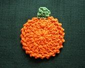 Pumpkin Patch Facial Scrubbies Make up remover