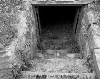 The Entrance Under An Old Barn, Goulburn, New South Wales, Australia, Black and White, 9x6, Old Building, Spooky