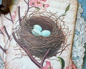 Birds Nest Tags - Vintage Bird Nest Tags - Home, Sweet Nest Tags - Set of 6