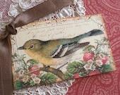 Bird Tags - Vintage Bird Tags - Strawberry Thief Bird - Set of 6