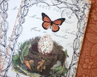 Birds Nest Tags - Butterfly Tags - Vintage Birds Nest Tags -Nature's Harmony, Monarch, Egg - Set of 4
