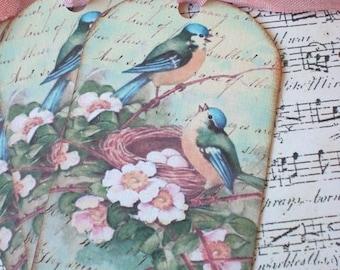 Bluebird Tags - Vintage Bluebird Tags - Bluebird Nest Tags - Set of 3