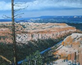Bryce Canyon Landscape. Print  11 X 14.75