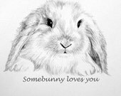 Bunny Note Card, Pencil Drawing, Some-Bunny Loves You, Stationery