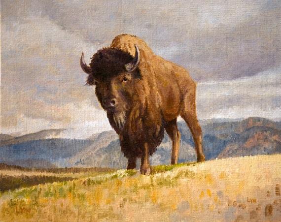 Giclee Print - American Bison Buffalo