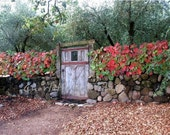 The Vineyard Gate