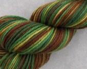 Dryad Handpainted Worsted Weight Superwash Merino Yarn