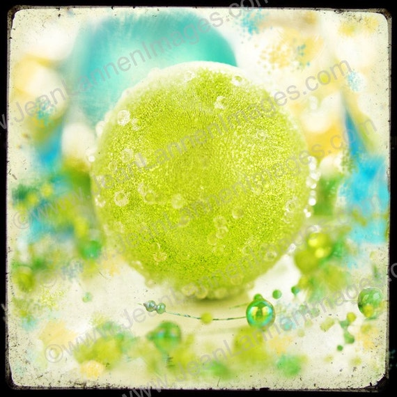 Eye Candy LIME BALL 7x7 Fine Art Print, Square, TTV, Sea Foam, Green Moss, Aqua, Teal, Turquoise Cyan, Yellow Photography by Jean Lannen