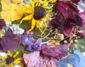 RESERVED - Multi Color Dried Pressed Flowers