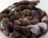Petrified - Handpainted Rambouillet wool top/roving - 4 oz