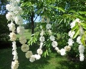 SPECIAL ORDER Daisy Chain Garland Wedding 20 Feet
