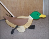 HI, I am a duck. A cute mallard duck push toy