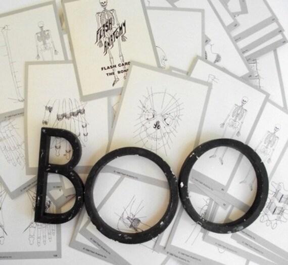 Anatomy Bones skeleton Flash Cards set of 5 Halloween
