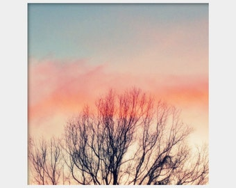 Winter Tree Branches, Sunset Photograph, Pretty Sky Photo, Pink Blue Art, Sky Photography, Nature Photograph, Winter Art, Sunset Wall Art