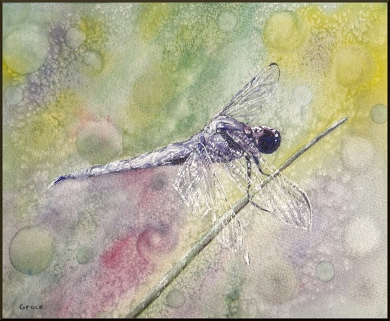 Summer Dragonfly...8x10 Limited Edition Giclee print..