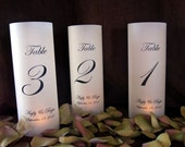 reserved for Stephanie- Customized Illuminated Wrap Lanterns for candles-qty 9