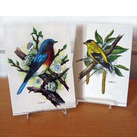 2 Vintage Lithographs - Birds by Ph. Gonner L5