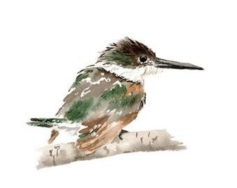 Kingfisher Print from Original Watercolor Painting, Brown Tan Green Wall Art Print, Watercolor Bird Print, Home Decor Wall Art Bird Print