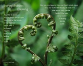 Lovingkindness Blessing - 12x9 Fern Heart Meditation