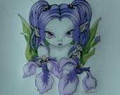 Irissa