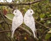 love birds 1