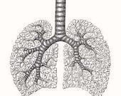 Anatomical Human Respiratory System Rubber Stamp 080