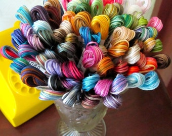 Seasons Variegated Embroidery Floss - By Cosmo - One Skein Of Every Color - 100.00 Dollars - Save 20.00 Dollars
