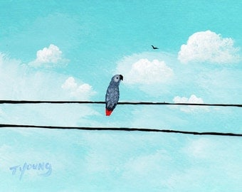 African Grey Parrot SUNNY SKIES art Print Todd Young painting