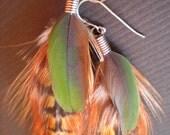 Heathers feather earrings - Anne