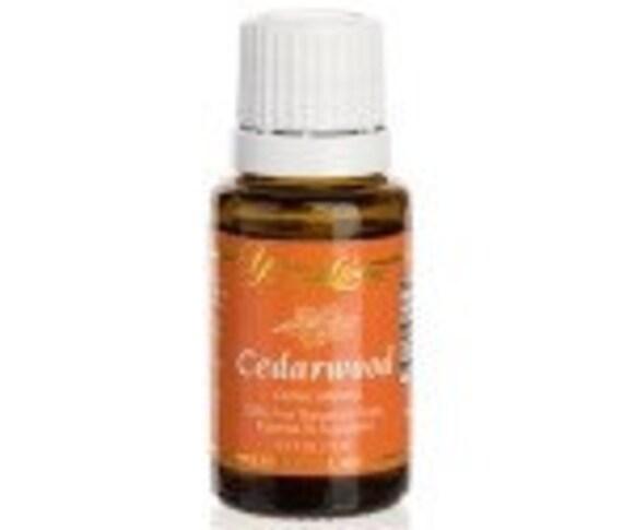 YOUNG LIVING Essential Oils - Cedarwood - 15ml - NEW