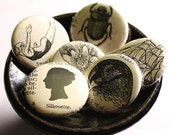 10 QTY // 1 Inch (25mm) Flat Back Buttons / Cabochons Made from Authentic 1930s Vintage Dictionary Illustrations