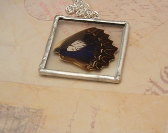 ON SALE-Real Butterfly Wing Necklace/Pendant-Shay