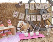Cowgirl Birthday Party Package - Giddy up Pony Banner - Western Cowgirl Garland - Baby Shower - Horse Party -  Cowgirl Centerpiece - Toppers