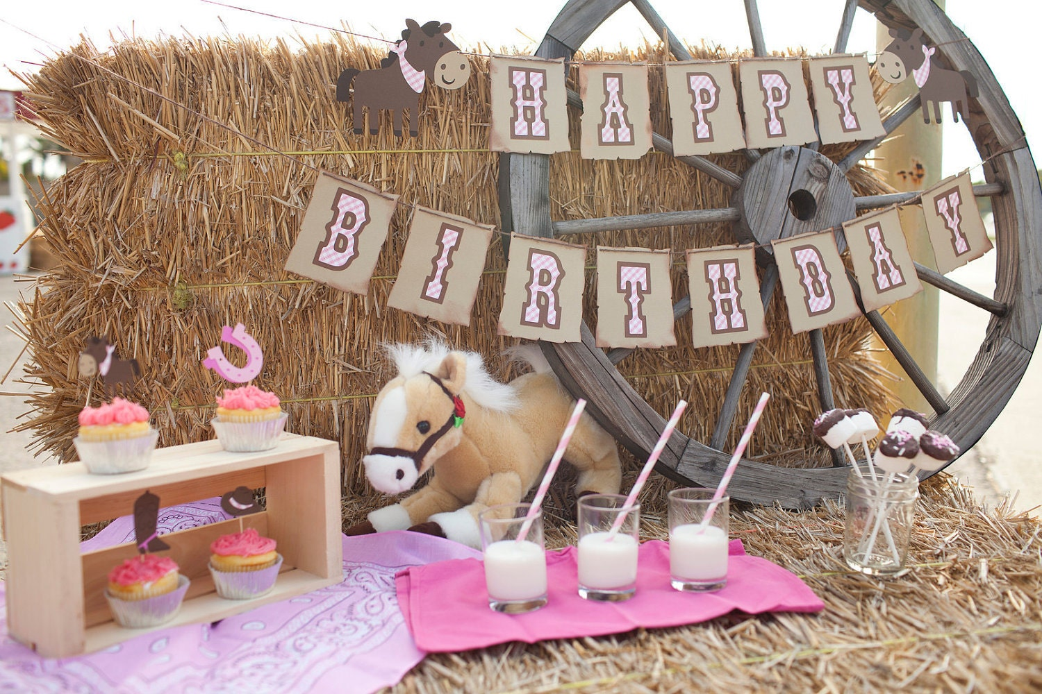 Cowgirl Birthday Decorations Cowgirl Birthday Party Package Giddy Up Pony Banner