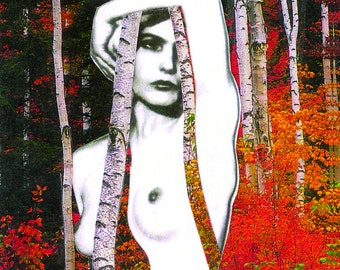 Entwined in Birches Collage Art Note Card - Blank - 3 .5 x 5 inches