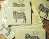 Set of 12 Curly Sheep Notecards